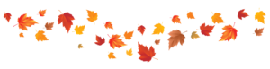 Fall_Leaves_PNG_Image